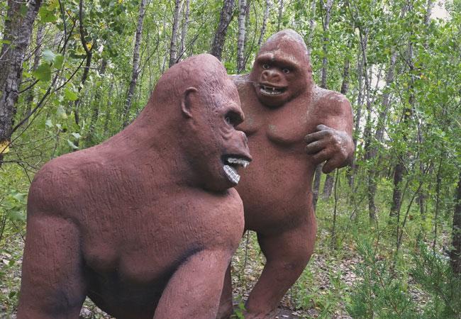 Naughty gorillas