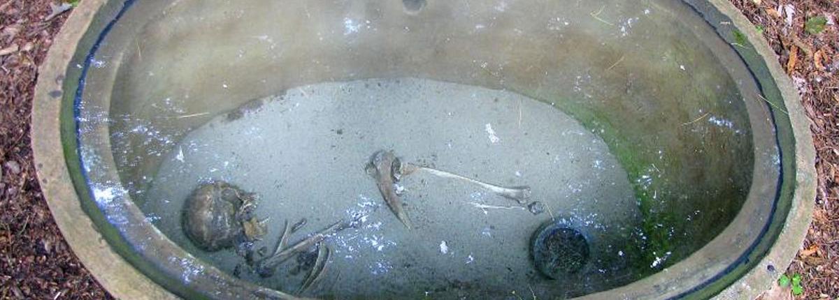 Open burial mound and replica skeleton in Sheboygan Indian Mound Park